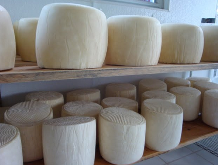 Giselle Cheese